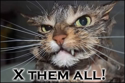 Cat Image Battle 120040108kd2kf